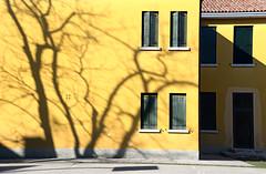 Wall (MelindaChan ^..^) Tags: italy 意大利 murano pattern light shade shadow dry sundried chanmelmel mel melinda melindachan life island village house yellow
