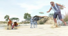 The boy and his dogs. (brian.werefox) Tags: findyours tmd signature k geralt jian con norderney beach boy dogs morning