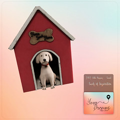 {YD}Little Puppies ({Your Dreams}) Tags: yourdreams newdecoration puppies thegachagardenevent gacha exclusive100mesh