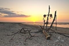 Sunset in Cherrueix Brittany (Sylvie Nenan) Tags: brittany bretagne beach plage landscape paysage