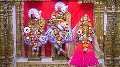 Radha Krishna Dev Shringar Darshan on Tue 22 May 2018 (bhujmandir) Tags: radha krishna dev lord maharaj swaminarayan hari bhagvan bhagwan bhuj mandir temple daily darshan swami narayan shringar