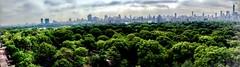 All is Green (dannydalypix) Tags: gotham manhattan newyorkcity nyc centralpark