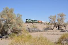 Green, Cream, Sand,Trees and a long story. (CN Southwell) Tags: arizona california rr railroad sd45 sd452 sd402 mojave desert