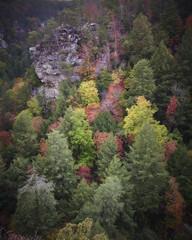 Tubb LogoDSCN2814 (StantonTubb) Tags: fallcreekfalls landscapes nature outdoors