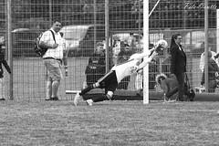 #FCKPotT_11 (pete.coutts) Tags: bodensee pokal 2018 fckaiseraugst juniorenb junioren bregenz football fuss fussball soccer