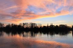 Coucher du soleil (past ' Elle) Tags: orange bleu ciel soleil seine arbre