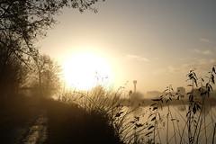 DSCF1637.jpg (zuikonex) Tags: hannover hanover leine wasserturm dawn morning river