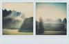 Early morning mist (Maija Karisma) Tags: polaroid instant pola littlebitbetterscan color600 sx70 roidweek2018 roidweek spring