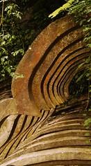 #xilitla #surrealismo #arquitectura #edwardjames #huastecapotosina #descubremexico (vicentevazquez2) Tags: huastecapotosina surrealismo descubremexico xilitla edwardjames arquitectura