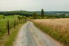 'Promenade Achouffe' (Walk 3680) Tags: ardenne ardennen belgien belgique belgium belgië coeurdelardenne europa europe houffalize lourtheorientale luxembourg luxemburg ourthe provincieluxemburg wallon wallonie wallonië wandelingen wandelkrant d50 nikon slagomdeardennen wandelen