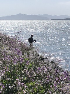 The Solitary Fisher