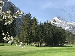 Golf von seiner schönsten Seite