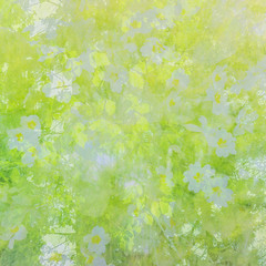 Spring is Here (Jane Simmonds) Tags: forestofdean green iphone multipleexposure spring trees woodland beech leaves primrose flowers abstract