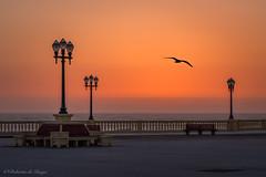 El color de la calima. (Roberto_48) Tags: oporto portugal atardecer calima mar costa maritimo paseo porto