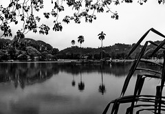 Kandy Lake (explored) (gerard eder) Tags: world travel reise viajes asia southasia srilanka ceylon kandy landscape landschaft lake lago see blackandwhite blackwhite blancoynegro bw sw wasser water natur nature naturaleza reflections spiegelung city ciudades cityview outdoor paisajes panorama monochrome