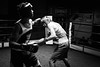 26881 - Hook (Diego Rosato) Tags: boxe boxelatina pugilato boxing ring palaboxe nikon d700 2470mm tamron bianconero blackwhite rawtherapee reunion hook gancio pugno punch
