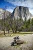 Large Tree Trunk in Yosemite Valley (Craig Stevens <castevens12>) Tags: treechunk trunk day daytime spring springtime april yosemitenationalpark yosemitevalley yosemitenps elcapitan trees redwoodtrees clouds sun sunny bluesky sunshine daylight vertical tokina1116mmf28 nikond7000 california sierranevada mountains mountain rocky rocks mountainrange