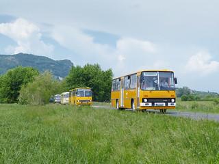 Ikarus 266.25 #NLZ-628