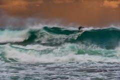 Surfer Long Exposure 02 (Crouchy69) Tags: sunset dusk landscape seascape ocean sea water wave waves flow motion coast clouds sky avalon beach sydney australia surf surfer