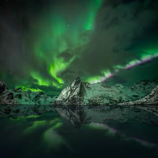 AuroraReine