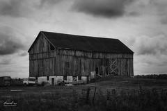Barn in Canada (NormFox) Tags: bw bnw barn blackandwhite blackandwhiteartistry canada clouds farms field monochrome outdoor rural