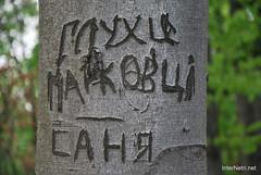 Ботанічний сад імені Гришка Буковий гай InterNetri  Ukraine 088
