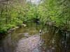 Catch me down Dreamy Creek (Jersey JJ (Thank you for 2 Million views!!)) Tags: catch me down dreamy creek fishing fisherman river green trees fractalius nj j2