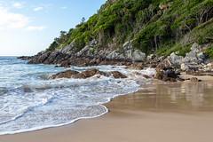 Elizabeth Beach  [Explored] (dean.white) Tags: australia au newsouthwales nsw bootibooti bootibootinationalpark elizabethbeach beach pacificpalms greatlakes myallcoast ocean surf sand sea shore seaside waves canoneos6d canonef35mmf2isusm greatlakesnsw