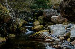 DSC_0511 (Alrom Photography) Tags: ireland nature nationalpark mahon mahonfalls irish luckoftheirish eire irishnature landscape landscapephotography mountain water waterfall