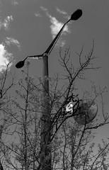 Pripyat - I (Manu CV) Tags: ussr ukraine pripyat abandoned radioactive chernobyl disaster exclusion sony a7s sonnartfe2835 zeiss 35mm f28 fe za monochrome