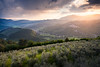 | Spring sunset | (valerio.clementi) Tags: umbria spring italy valnerina valley landscape sunset pentax pentaxitalia myland colorfull sun mountain look colors