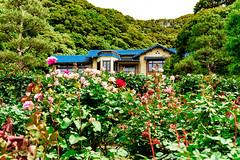Kamakura Museum of Literature : 鎌倉文学館 (Dakiny) Tags: 2018 spring may japan kanagawa kamakura city street nikon d750 nikonafsmicronikkor60mmf28ged afsmicronikkor60mmf28ged nikonclubit