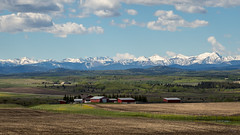 Canadian Rockies in the Distance (Chuck - Thanks for the 1M Views!!!) Tags: photosbymch landscape ranch canadianrockies transcanadahwy alberta canada 2017 canon 5dmkiv spring travel outdoors mountains snow