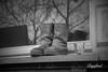 Kopje koffie glazenwasser...... (Digifred.nl) Tags: digifred 2018 nikond500 amsterdam nederland netherlands holland iamsterdam straat street city grachten streetphotography toeristen tourists blackwhite blackandwhite monochrome boots shoes cup coffee window laarzen koffie vensterbank