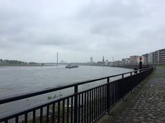 24a-Rheinschiff und Oberkasseler Brücke (julia_HalleFotoFan) Tags: düsseldorf nordrheinwestfalen nrw rhein rheinland rheinuferpromenade altstadt rheinschiff flussschiff