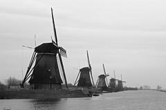 Kinderdijik (YY) Tags: kinderdijk netherlands windmills windmill molenwaard southholland river bw blackandwhite