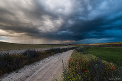 Summerstorm (KESS Photos) Tags: skyscape sky cielo field campo perales madrid landscape paisaje storm weather tormenta cloud nube clouds nubes nature naturaleza