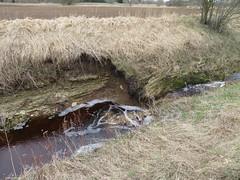 Uhaku karstiala / Uhaku karst area, Estonia (Veeseire) Tags: uhaku karst karstiala jõgi erra juga veeseireee veeblogi veeblog veeveeb veeseire loodusblogi loodus kevad