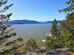 A view through the trees (walneylad) Tags: lighthousepark pointatkinson westvancouver britishcolumbia canada park parkland woods woodland forest rainforest urbanforest tree trees rock rocks water sea ocean pacificocean howesound bowenisland may spring sun bluesky waves beautiful seascape landscape view scenery nature
