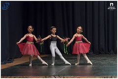 CLASSICA GRUPPO BABY - QUEL MAZZOLIN DI FIORI (alessiolupo) Tags: palco dei talenti 2018 alessio lupo performance theater stage ballerina arts entertainment dancer dance ballet audience performing event girl quel mazzolin di fiori classica ilpalcodeitalenti contest danza dancephotos danzare dancers danzando balletto ballerine danzainfoto alessiolupo palcodeitalenti