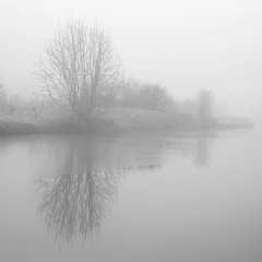 I know it's Spring, but ... (Ged Slaughter Photography) Tags: bw blackandwhite winter wintery mist misty gedslaughter treescape tree water waterscape landscape fog foggy canal bridgewatercanal bridgewater
