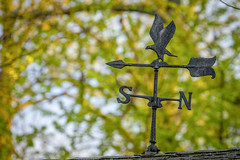 Old weathervane on our shed (John Brighenti) Tags: rockville maryland md sony alpha a7 backyard spring earlyevening sky trees plants branches leaves minolta rokkor 50mm f14 weathervane roof shingles
