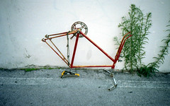 Cosa rimane di una bici (Minchioletta) Tags: olympusxa dmparadies200 expired expiredfilm expired072014 c41 analogicait lomographyandvintagecameras bike bicycle bicicletta plant pianta muro wall