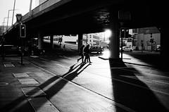evening sunlight (gato-gato-gato) Tags: 35mm contax contaxt2 iso400 ilford ls600 noritsu noritsuls600 schweiz strasse street streetphotographer streetphotography streettogs suisse svizzera switzerland t2 zueri zuerich zurigo analog analogphotography believeinfilm film filmisnotdead filmphotography flickr gatogatogato gatogatogatoch homedeveloped pointandshoot streetphoto streetpic tobiasgaulkech wwwgatogatogatoch zürich ch black white schwarz weiss bw blanco negro monochrom monochrome blanc noir strase onthestreets mensch person human pedestrian fussgänger fusgänger passant sviss zwitserland isviçre zurich autofocus