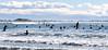 Sumner (stephen trinder) Tags: stephentrinder stephentrinderphotography aotearoa kiwi landscape godzone christchurch christchurchnewzealand nz newzealand sea tide waves water fun sand surfing waveboarding paddleboarding blue sky seaside