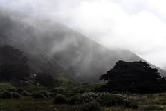 Big Sur Morning II (Joe Josephs: 3,166,284 views - thank you) Tags: california travel travelphotography westcoast fog foggyweather morning dawn landscape californialandscape bigsur bigsurcalifornia mountains scenic
