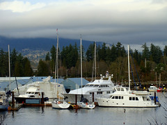 Surfrider and Friends (knightbefore_99) Tags: vancouver coalharbour bc west coast water pacific ocean city terminal boat sail surfrider moorage cold winter awesome