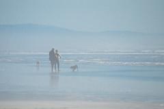 Clam Beach County Park - Humboldt County - California (TravelMichi) Tags: californa california travel usa2018 mckinleyville usa us