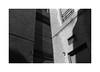 (billbostonmass) Tags: adox silvermax 100 129silvermax1100min68f fm2n 40mm ultron epson v800 boston massachusetts camera