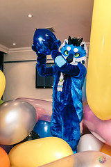 Balloon Party - March-31-2018-2032'36-IMG_8064 (SGT.Tibbs) Tags: 31032018 balloonparty bristolfilton convention furries furry furryculture fursuits hobby holidayinn justfurtheweekend lgbtqia people subculture